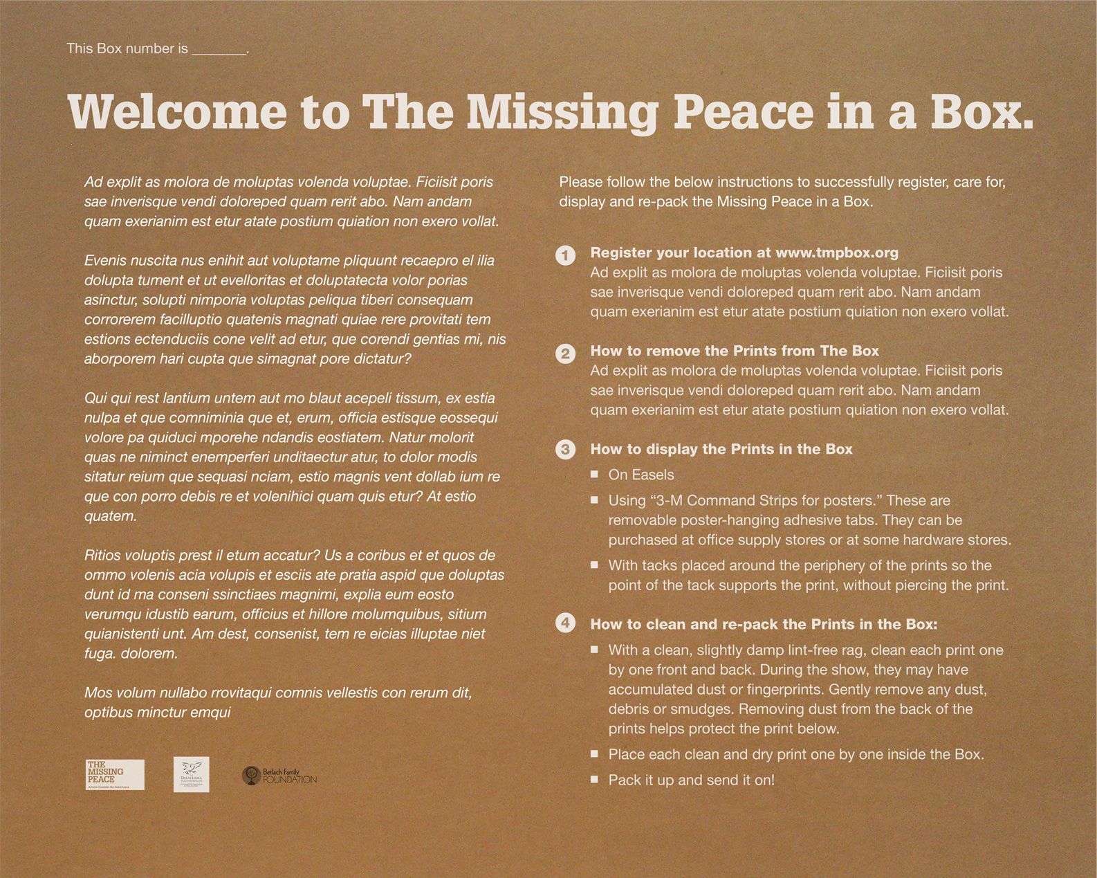 The Missing Peace (in a box) - Inside Box